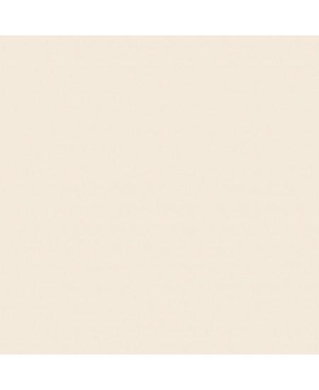 Porcelanato ELIANE 50x50cm Bianco Plus Natural