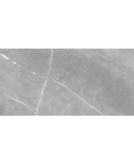 Porcelanato ELIANE 80x160cm Marmo Gris Polido