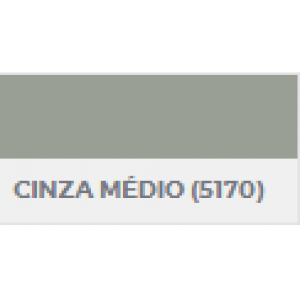 Tinta Renner Dulit Esmalte Cinza